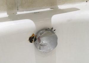 Enamel Bath Repair London